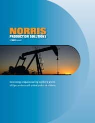 Norris Production Solutions Brochure - Norriseal