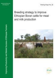 Breeding strategy to improve Ethiopian Boran cattle for meat ... - IPMS