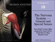 General senses - Napa Valley College