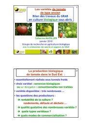 variétés tomate ancienne - GRAB, Groupe de Recherche en ...