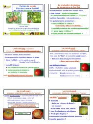 Variétés de tomate - GRAB, Groupe de Recherche en Agriculture ...