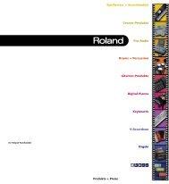 ÂØÒňΠ- Roland