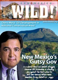 New Mexico Wilderness Alliance