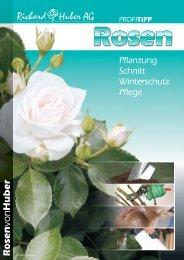 Profitipp Rosen - Richard Huber AG