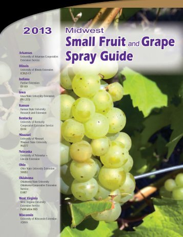 2013 Midwest Small Fruit and Grape Spray Guide - University of ...