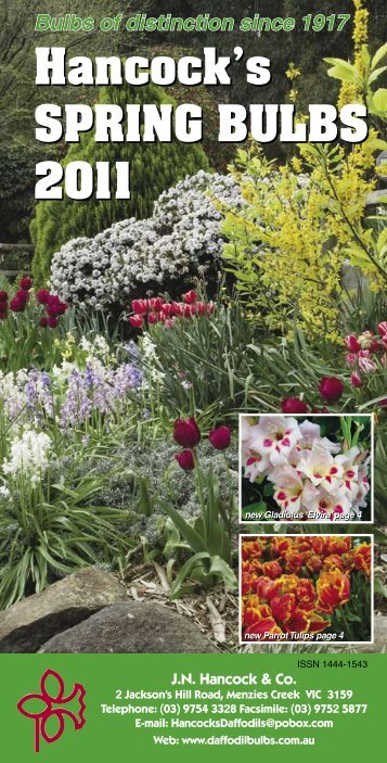 Bulbs of distinction since 1917 - daffodil bulbs