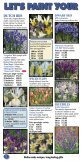 Bulbs of distinction since 1917 - daffodil bulbs - Page 2