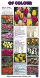 Bulbs of distinction since 1917 - daffodil bulbs - Page 5