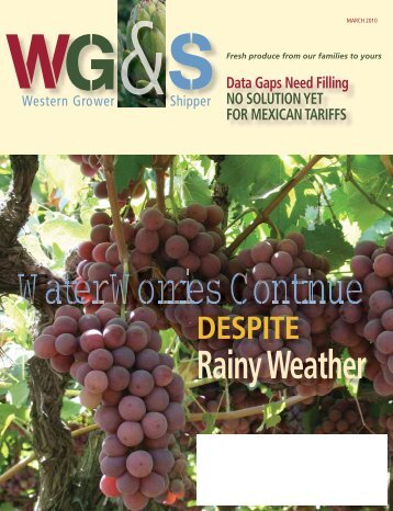 Rainy Weather - Western Growers Association
