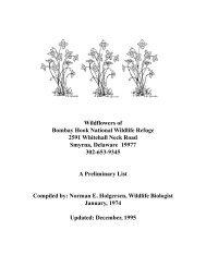 Wildflowers of Bombay Hook National Wildlife Refuge 2591 ...