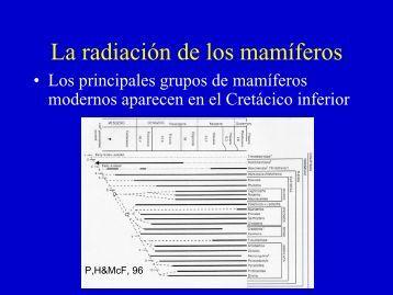 La radiación de los mamíferos - Aragosaurus