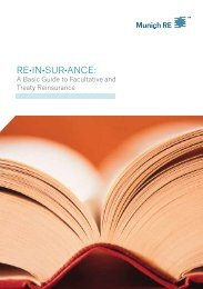 re•in•sur•ance: - Munich Reinsurance America, Inc.