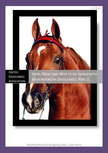 How, What and Why to do things with your American Saddlebred ...