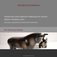 Product brochure, IPO/ Peverse Merger - De Micco & Friends