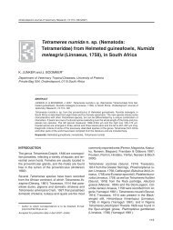 Tetrameres numida n. sp. (Nematoda: Tetrameridae) from Helmeted ...
