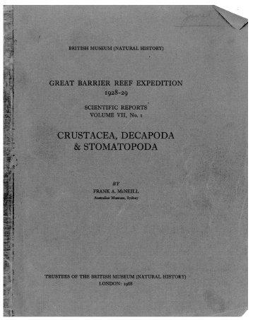 Stomatopoda - AToL Decapoda