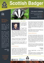 Download Now - Scottish Badgers