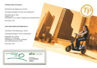 TP Elektroroller Ferdinand II 500 Watt Hi-Tech Elektromotor ... - Elfar