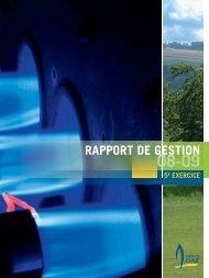 RAPPORT DE GESTION - Holdigaz