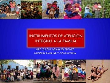 exposicion-apgar familiar - Centro de Salud San Cosme LIMA PERU