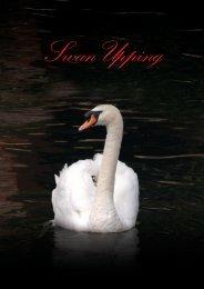 *SwanUpping 7