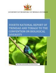 CBD Fourth National Report - Trinidad and Tobago - Convention on ...