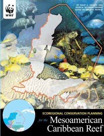 Ecoregional conservation planning for the Mesoamerican ...