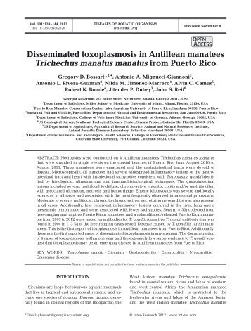 Disseminated toxoplasmosis in Antillean manatees Trichechus ...
