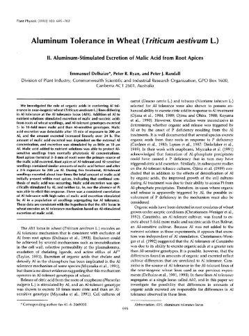 Aluminum Tolerance in Wheat (Triticum aestivum ... - Plant Physiology
