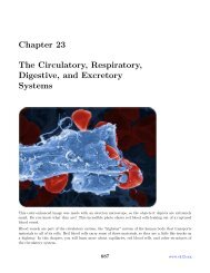 Chapter 23 The Circulatory, Respiratory, Digestive, and Excretory ...