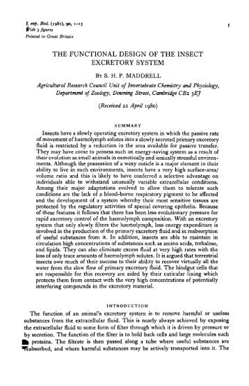 the functional design of the insect excretory system - The Journal of ...