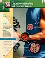 Chapter 34: Circulatory, Respiratory, and Excretory Systems