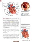 Chapter 34: Circulatory, Respiratory, and Excretory Systems - Page 6