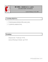 bc1002: module 1: lab 4 excretory system - Personal homepages