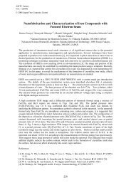 Nanofabrication and characterization of iron compounds with ...