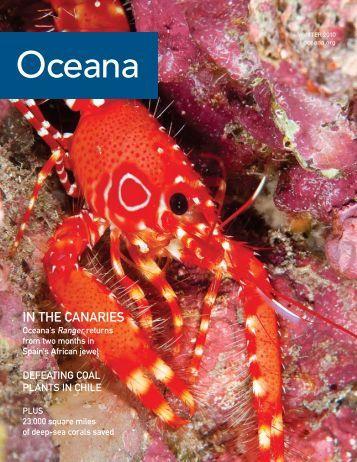 Download Oceana Magazine: Winter 2010 PDF