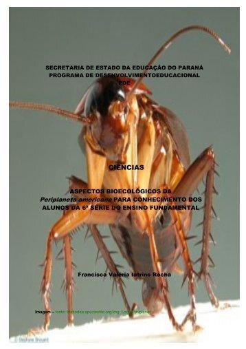 CIÊNCIAS - Secretaria de Estado da Educação do Paraná