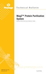 Protein Purification System Technical Bulletin, TB336 - Promega
