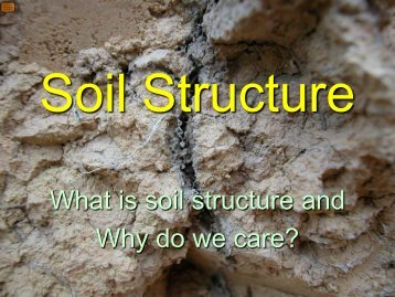 Soil Structure - Environmental Health Section