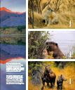 The Faces Of Fall - Bragg Creek - Page 3