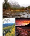 The Faces Of Fall - Bragg Creek - Page 5