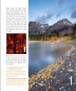 The Faces Of Fall - Bragg Creek - Page 7