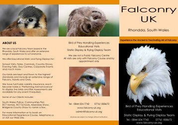 click here to view - Falconry UK