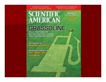 Next Generation Hydrocarbon Biorefineries