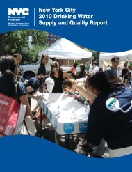 New York City 2010 Drinking Water Supply and Quality ... - NYC.gov