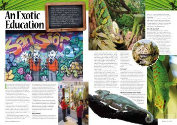 The Reptile Magazine - Ysgol San Sior