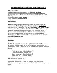 DNA Origami Paola Dell'Olio Hellwig Travis Ranch School. - ppt ... | 245x189