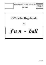 Spielregeln FUN-Ball - schenkg.ch