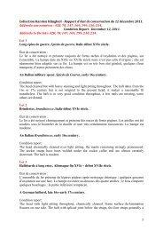 1 Collection Karsten Klingbeil - Rapport d'état de conservation du 12 ...