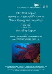 (IPCC) ocean acidification workshop report